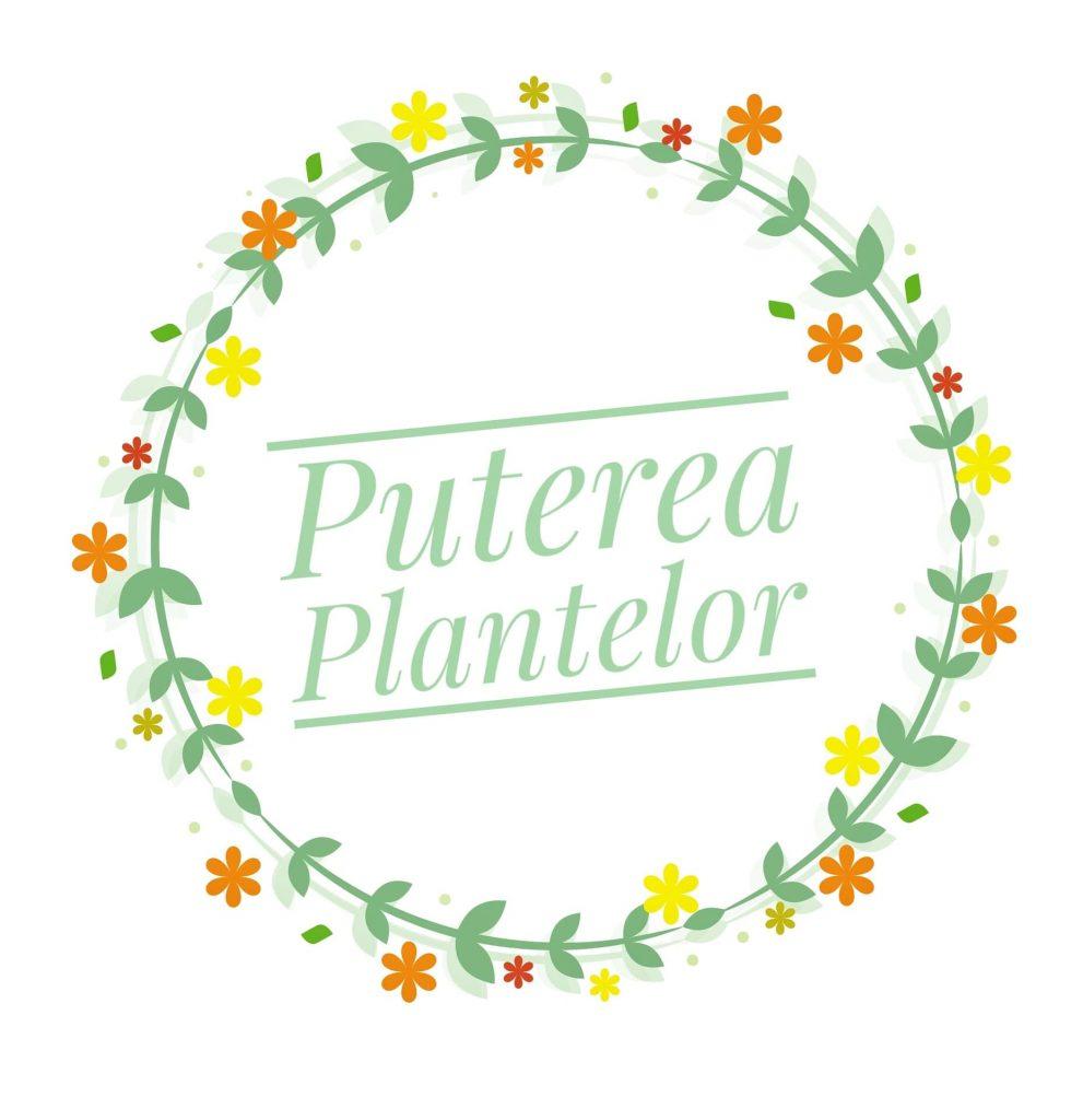 Puterea plantelor prin produse cosmetice